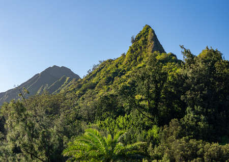Steep tree covered mountain ridge rises above the Nu'uanu Pali lookout in Oahu 版權商用圖片