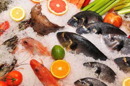 fish and seafood in the ice photo