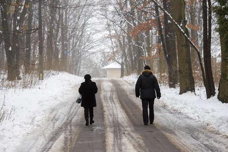 sleet: men walking in the winter park