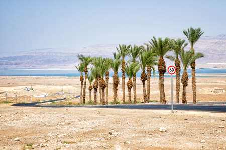 masada: road from Masada to the Dead Sea Stock Photo