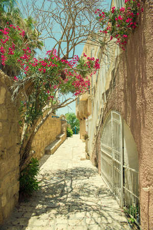 jewish houses: old stone city Jaffa in Tel Aviv