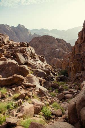 Beautiful views of Mount Sinai in Egypt