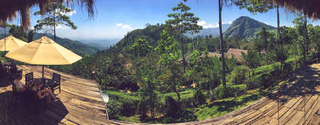 views of Ella Rock and tea plantation
