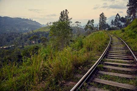 Chemin de fer dans les jungles du Sri Lanka