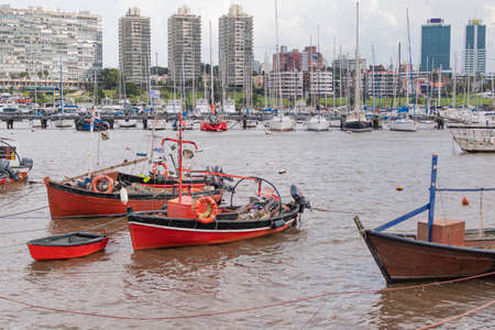 Costa del Rio de la Plata with small boats and sailboats in diving port in Uruguay 免版税图像