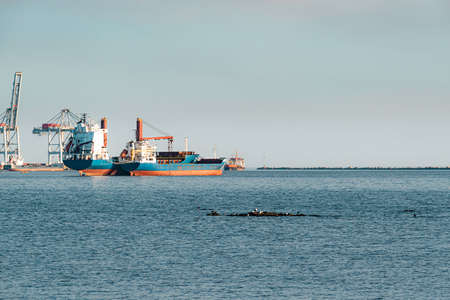 Port of Montevideo, Bahia contaminated with much work to do to improve
