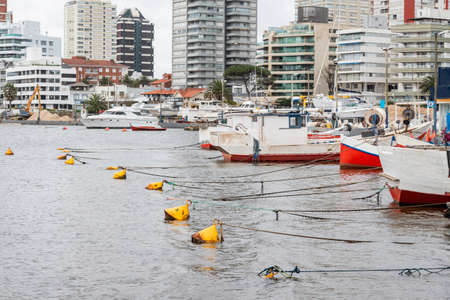Punta del Este port with its boats and fast moorings. beautiful place to walk