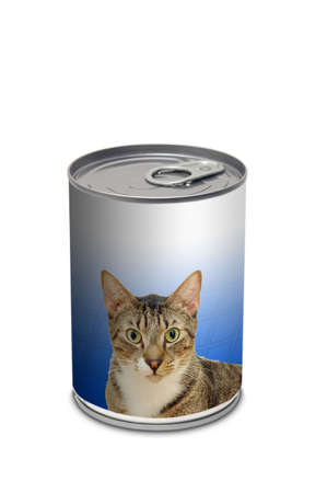 generic: Cat food can - generic cat food can on white Stock Photo