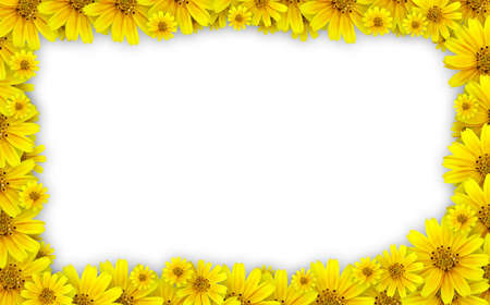 tickseed: Flower frame - coreopsis lanceolata (tickseed) used for floral frame with white background