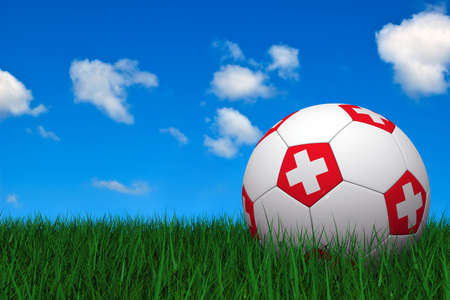 Swiss soccer ball laying on the grass photo