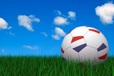 Dutch soccer ball laying on the grass photo