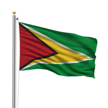 Flag of Guyana with flag pole waving in the wind over white background photo