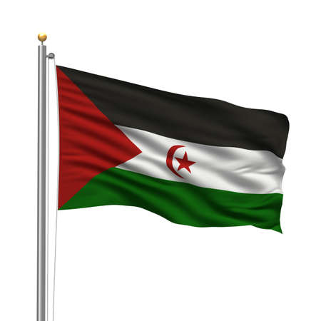 sahrawi arab democratic republic: Flag of the Sahrawi Arab Democratic Republic with flag pole waving in the wind over white background Stock Photo
