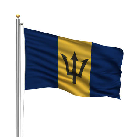 barbadian: Flag of Barbados with flag pole waving in the wind over white background