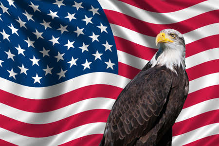 Patriotic symbol showing the American flag with a bald eagle photo