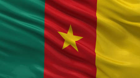 cameroonian: Flag of Cameroon waving in the wind