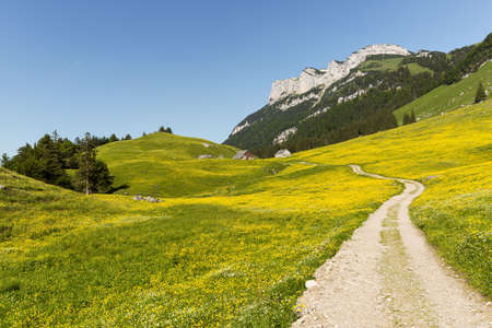 hiking path: Pictoresque hiking path in Wasserauen, Switzerland in early summer.