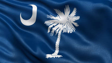 south: US state flag of South Carolina with great detail waving in the wind.