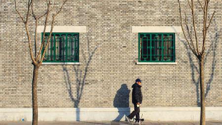 leisurely: Leisurely walk the dog for the elderly