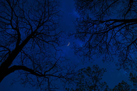 the color of silence: Looking at the stars