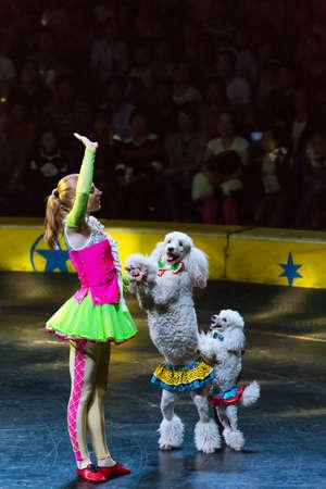 acrobatics: chica con acrobacias perros amaestrados