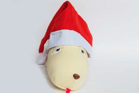 artefacts: toy dog wearing a Christmas Hat