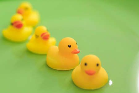Toy duck in the  bathtub Stock Photo