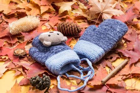 Children's gloves on the leaves Imagens