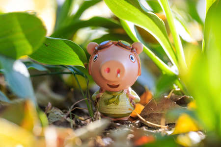 Pig doll traveling outdoors Banco de Imagens - 111179128