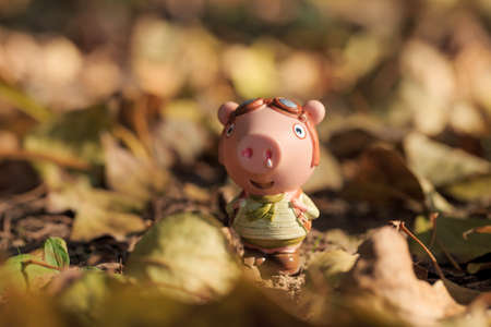 Pig doll traveling outdoors