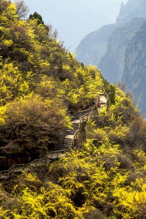 Baquan Gorges fascinating natural landscape 版權商用圖片