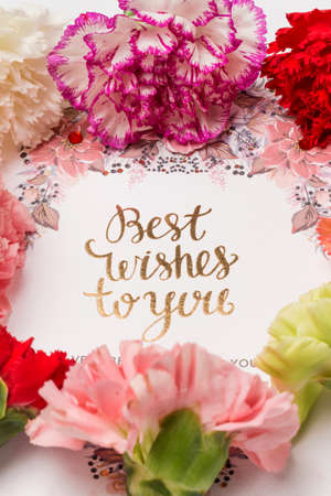 Best Wishes To You greeting design with carnation flowers