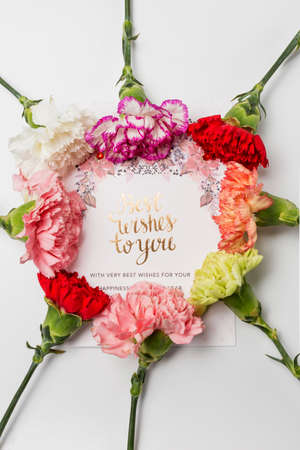 Best Wishes To You greeting card design with carnation flowers Banco de Imagens