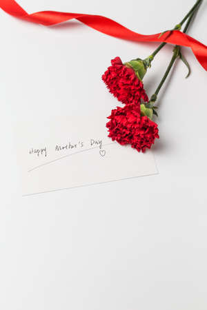 Happy Mother's Day card with carnation flowers