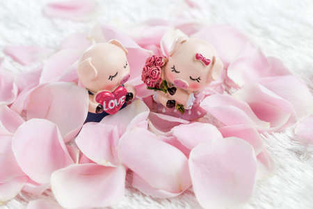 Two pig dolls surrounded with rose petals