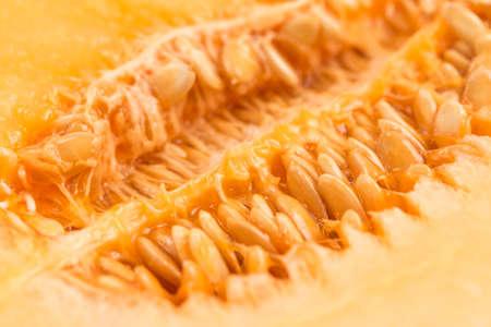 Fresh and delicious cantaloupe, close-up