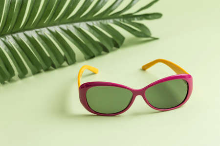 Sunglasses and leaf on a green background