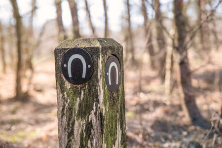 weathered: A weathered wooden pole with a horseshoe sign in a forest