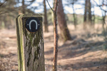 wooden horse: Wooden pole with a horseshoe sign in a forest along a trail Stock Photo