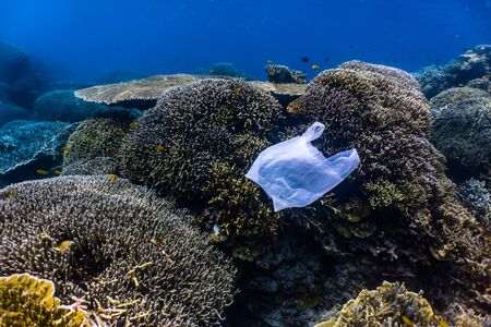 Single-use plastic in a shallow reef. Plastic is a major contributor of pollution in the ocean.