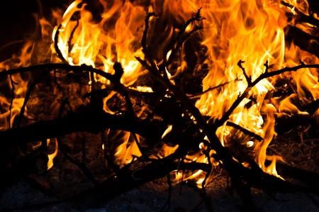 campfire Stock Photo - 13416430