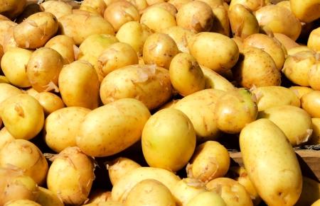 Potatos on the green market photo