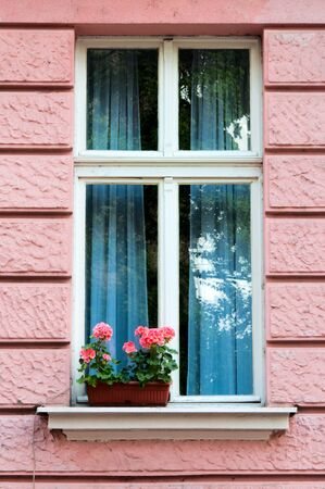 Windows and flowers Stock Photo - 13815490