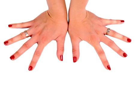 Female hand isolated on white Stock Photo - 14043856