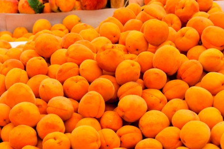 Bunch of fresh apricots Stock Photo - 14442376