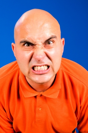 bald man: Angry bald guy isolated on blue Stock Photo