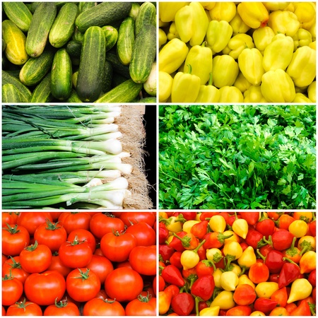 Plenty of vegetables collage photo
