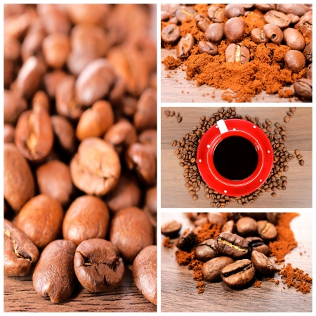Raw coffee beans and grounded coffee photo