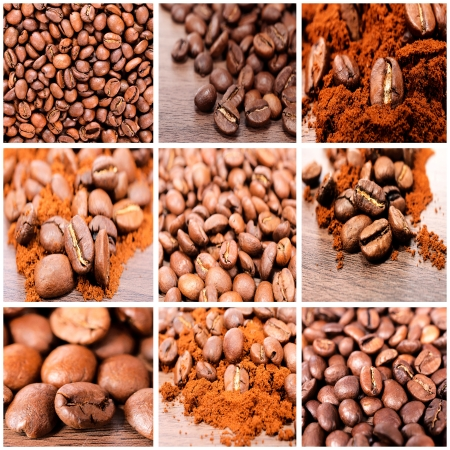 Bunch of the raw coffee beans photo