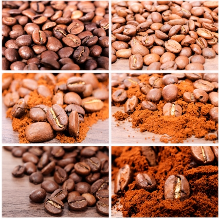 Bunch of raw coffee photo